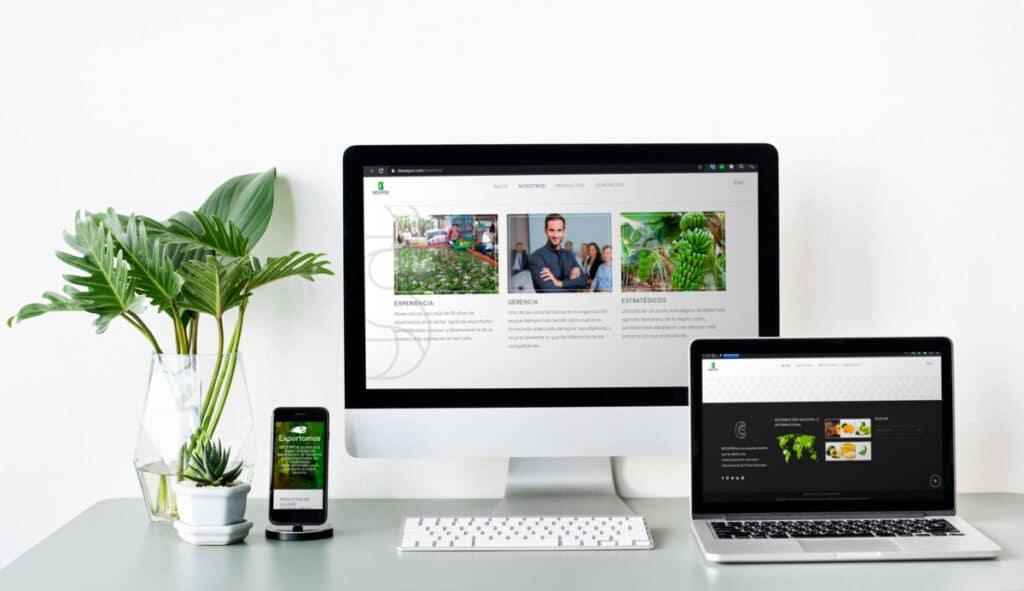 Cliente Web Bioexpor